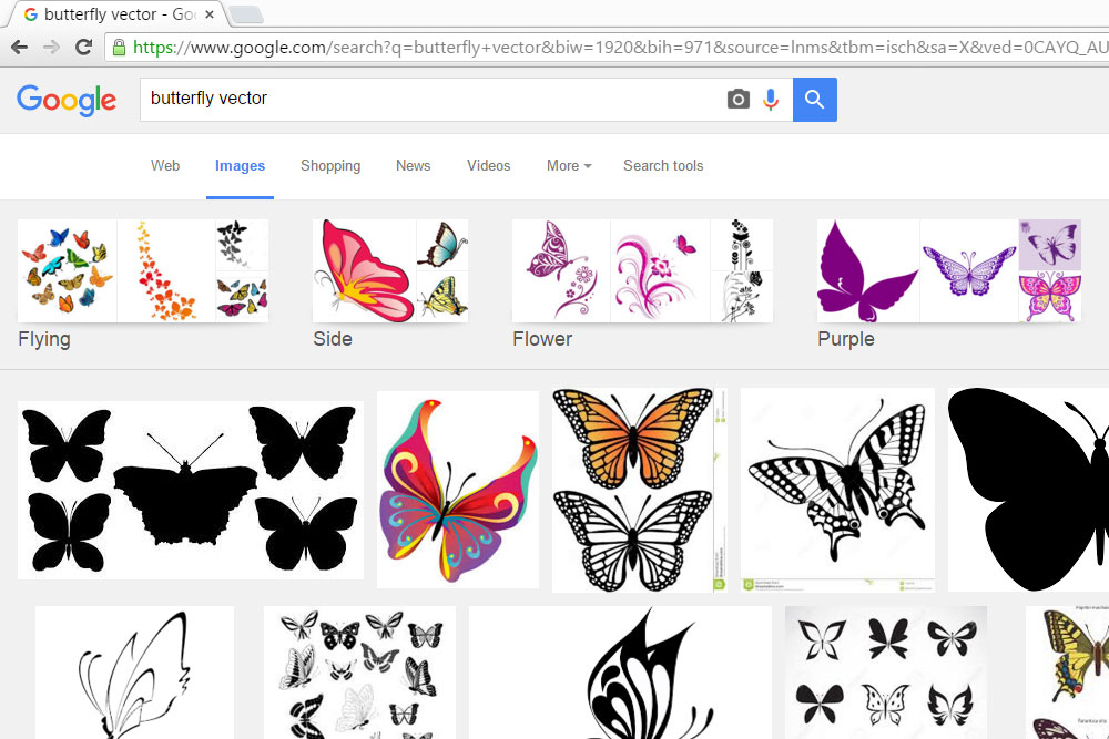 butterfly, vector, google images